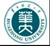 HuaZhong Logo